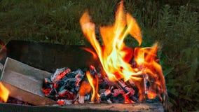 Llama del fuego con leña y carbones rojos Fotografía de archivo libre de regalías