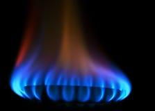 Llama del fuego de gas de la estufa Imágenes de archivo libres de regalías