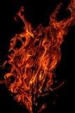 Llama del fuego grande en un fondo negro Foto de archivo libre de regalías
