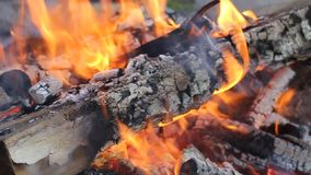 Llama del fuego. Registros ardientes metrajes