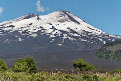Llama del volcán - Chile, enero de 2006 Foto de archivo