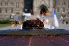 Llama eterna ante el parlamento canadiense Foto de archivo libre de regalías