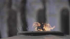 Llama eterna en la calle almacen de metraje de vídeo