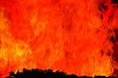 Llama gigante del fuego sobre árboles. Imagen de archivo