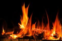 Llama hermosa del fuego Fotografía de archivo