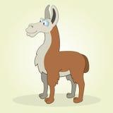 Llama. Illustration of Cartoon Llama for web design Royalty Free Stock Photo