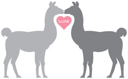 Llama Llove. Silhouette illustration of two llamas kissing with their necks forming a rough heart shape. A pink heart reads Llove Stock Photo