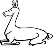 Llama lying down. Line drawing of a llama in reclined position Stock Photos