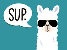 Free Llama Poster With Inscription Stock Photography - 121718822