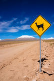 Llama Road Sign. In Bolivia, Andes, South America stock photos