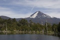 Llama volcano in Conguillio park Stock Photo