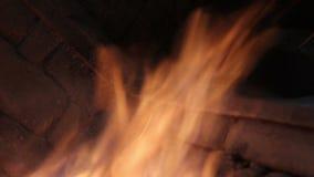 Llama y albañilería almacen de metraje de vídeo