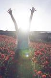 Llamarada de Sun Imágenes de archivo libres de regalías