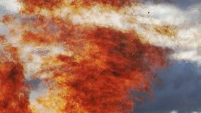 Llamas ardientes con neblina del calor metrajes