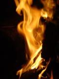 Llamas de un fuego en la noche Imagen de archivo