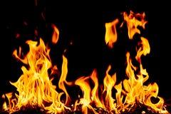 Llamas del fuego de la naturaleza Imagen de archivo libre de regalías