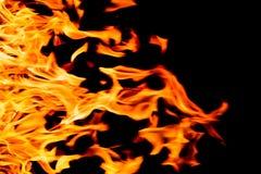 Llamas del fuego de la naturaleza en la noche oscura Imágenes de archivo libres de regalías