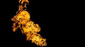 Llamas del fuego en fondo negro fuego en el fondo negro aislado Modelos del fuego libre illustration