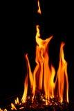 Llamas del fuego en la noche oscura Fotos de archivo libres de regalías