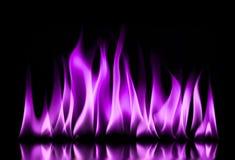 Llamas del fuego en un negro Fotos de archivo libres de regalías