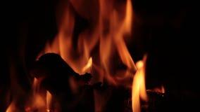Llamas del fuego en una chimenea metrajes