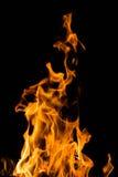 Llamas del fuego real aisladas en negro Foto de archivo libre de regalías