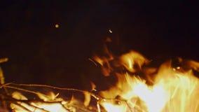 Llamas en el primer del fuego
