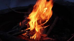 Llamas reales en el fuego con los registros y la nieve ardientes alrededor metrajes