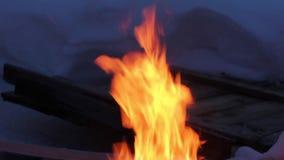 Llamas reales en el fuego con los registros y la nieve ardientes alrededor almacen de video