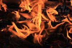 llamas Rojo-anaranjadas foto de archivo