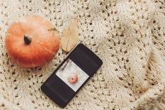 Llame por teléfono con la foto de la calabaza y de la hoja con la calabaza linda en s caliente Imagenes de archivo