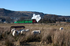 Llanberis steam train Royalty Free Stock Image