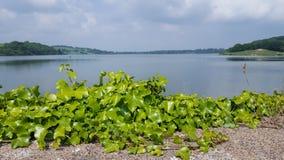 Llandegfedd-Reservoir Lizenzfreie Stockbilder
