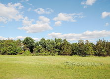 Llandscape. Closeup  landscape in summer day Royalty Free Stock Photography