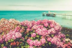 Llandudno Sea Front in North Wales, United Kingdom. Beautiful Summer Day in Llandudno Sea Front in North Wales, United Kingdom, view from the hill with hydrangea Stock Photography