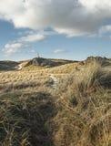 Llandwyn海岛风景在北部威尔士,英国 图库摄影