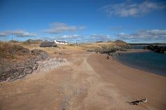 Llandwyn Island Royalty Free Stock Photo