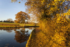 Llangollen canal autumn reflections Royalty Free Stock Images