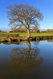 Llangollen kanału odbicia Zdjęcie Stock