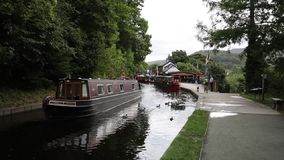 Llangollen Wales UK ducks and boats on the canal stock footage