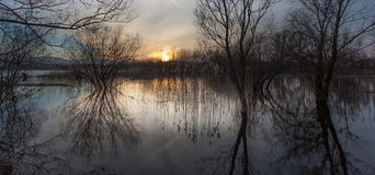 Llangorse jezioro, Brecon Zdjęcia Stock