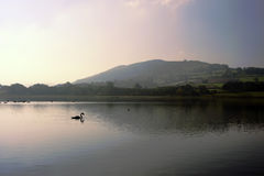 Llangorse lake Royalty Free Stock Photos