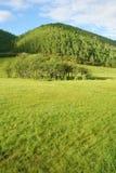 Llano Imagenes de archivo