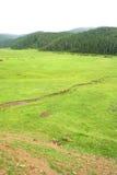 Llano Foto de archivo