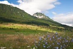 Llano de la montaña Fotografía de archivo
