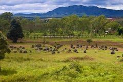 Llano de tarros Fotografía de archivo libre de regalías