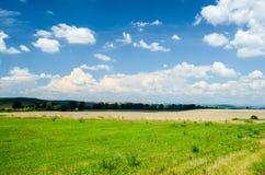 Llano en el verano Fotografía de archivo