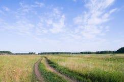 Llano siberiano Imagen de archivo libre de regalías