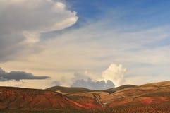 Llanos de la Argentina Fotos de archivo libres de regalías