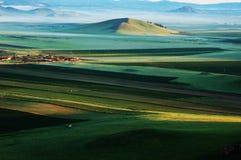Llanos verdes Imagenes de archivo